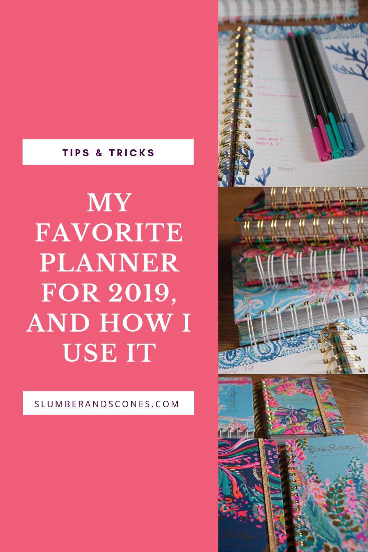 Pinterest image for my 2019 planner